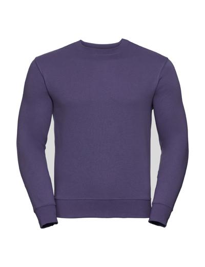 262M•ADULTS AUTHENTIC SWEATSHIRT, 2XL, purple (13)